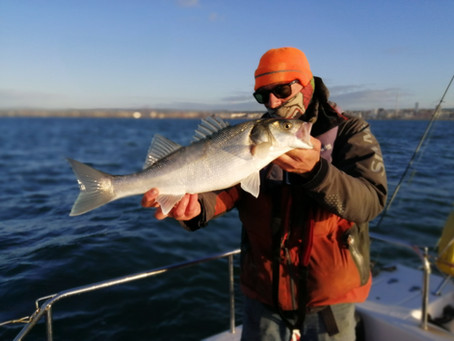 Brighton Inshore Fishing - Catch report 13th October 2020