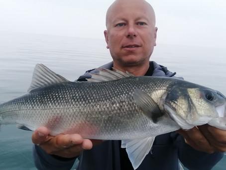 Brighton Inshore Fishing - Catch report 26th July 2021