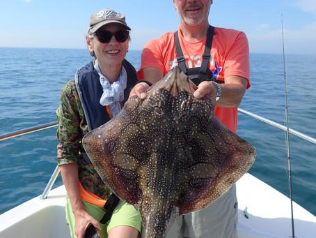 Brighton Inshore Fishing - Catch report 10th August 2020