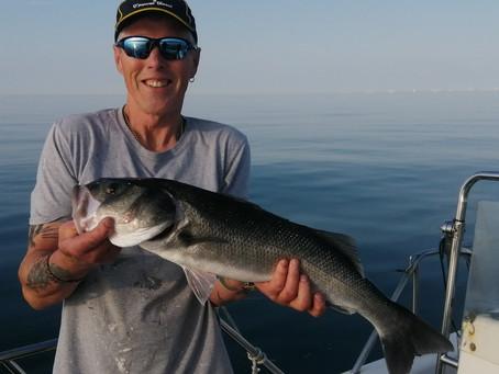 Brighton Inshore Fishing - Catch report 19th July 2021