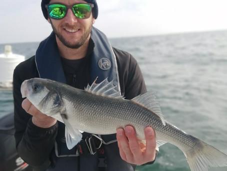 Brighton Inshore Fishing - Catch report 18th April 2021