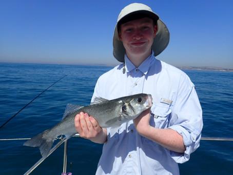 Brighton Inshore Fishing - Catch report 7th August 2020