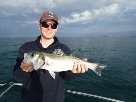 Brighton Inshore Fishing - Catch report 19th July 2020