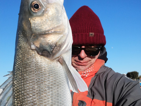 Brighton Inshore Fishing - Happy new year... Catch report 30th December 2020 to 3rd January 2021