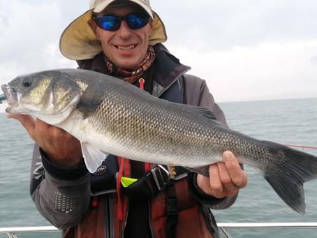 Brighton Inshore Fishing - Catch report 25th July 2021