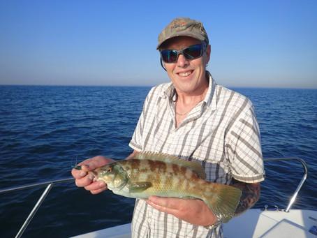 Brighton Inshore Fishing - Catch report 11th August 2020