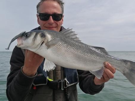 Brighton Inshore Fishing - Catch report 28th May 2021
