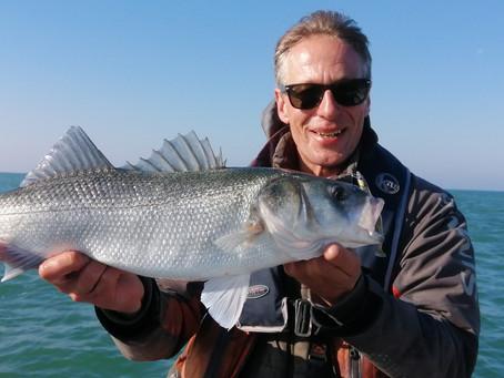 Brighton Inshore Fishing - Catch report 31st May 2021