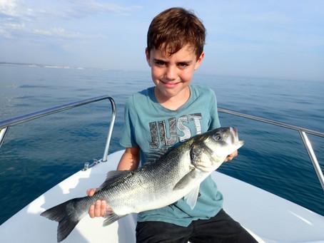 Brighton Inshore Fishing - Catch report 9th August 2020