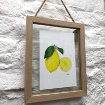 Lemon 1.1.jpg