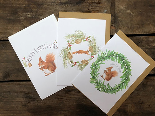 Squirrel christmas pack