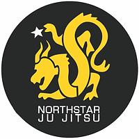Northstar Ju Jitsu logo