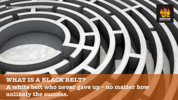 What is a Black Belt?
