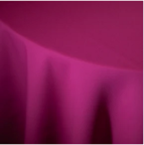 Hot Pink Poly.PNG