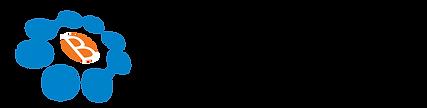 Brilliant Solar -logo-01.png