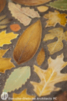 Custom-made ceramic leaf-tiles scatter patterns from local trees across an expansive curved hearth.