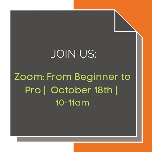 Zoom: From Beginner to Pro