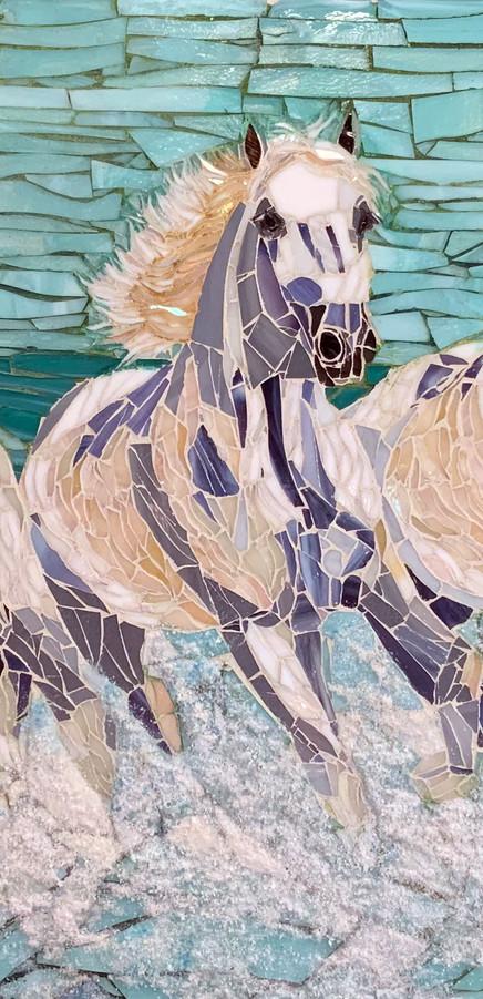 water-gallop-horse2.jpg