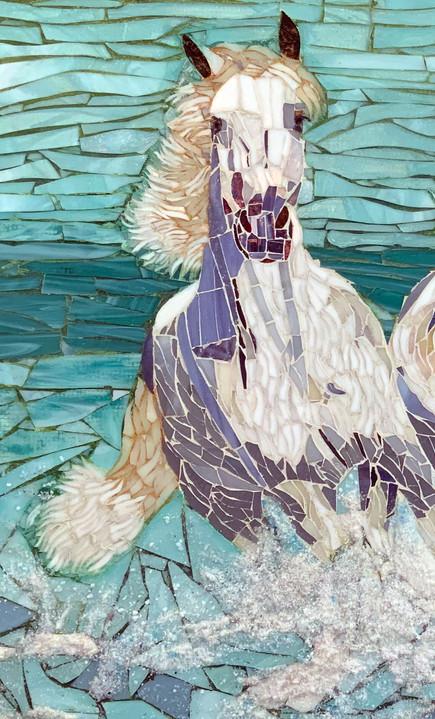 water-gallop-horse1.jpg