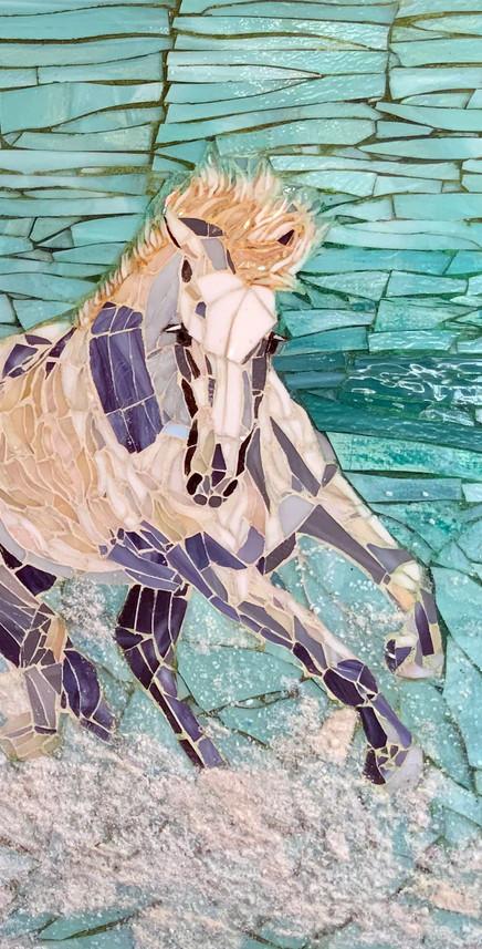 water-gallop-horse3.jpg