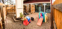 little-dog_play-yard