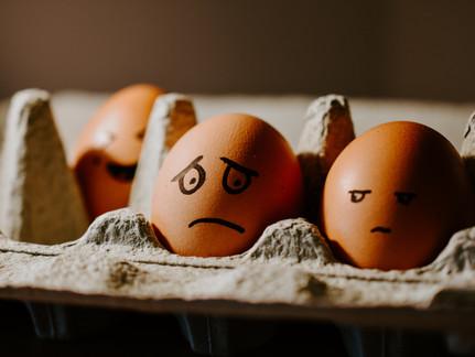 The Evolutionary Failure of Eating Eggs