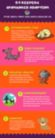 K9 Keepers Five Infographic.png
