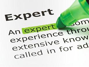 japanese knotweed expert report.jpg