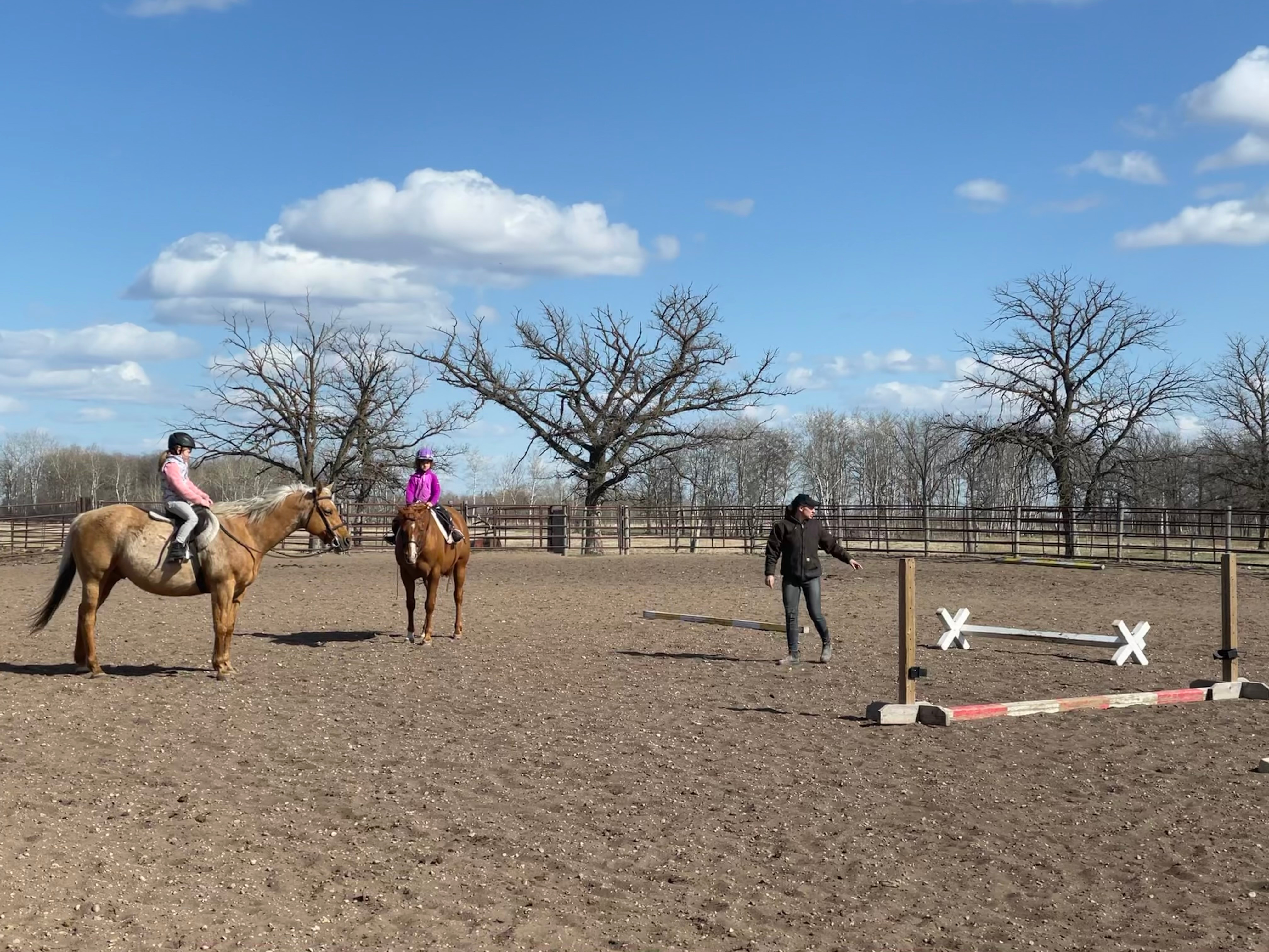 Semi-Private Riding Lessons
