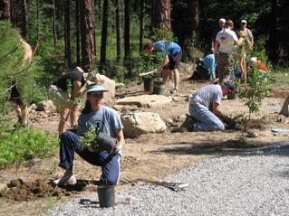 Parks Build Community