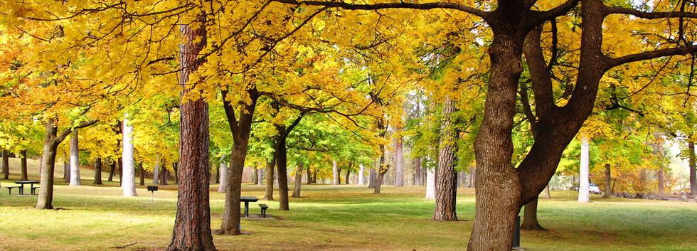 Highland Park.jpg