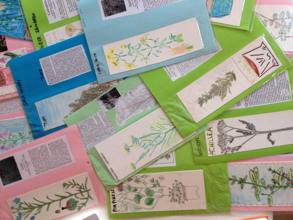 le piante officinali e aromatiche