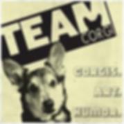 TeamCorgi.png