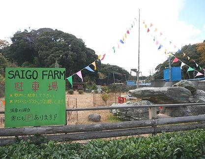 farm全景.jpg