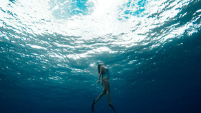 The Most Amazing Diving Spots