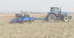 Falta de chuvas faz plantio de soja atrasar e normalização do clima está prevista para fim do mês