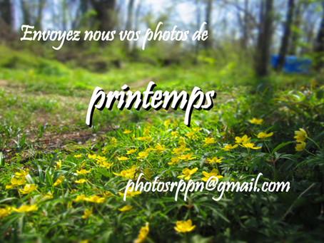 Envoyez-nous vos belles photos de printemps !