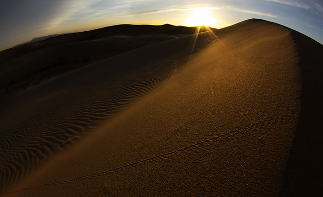 Khongor Sunset 2 fin.jpg