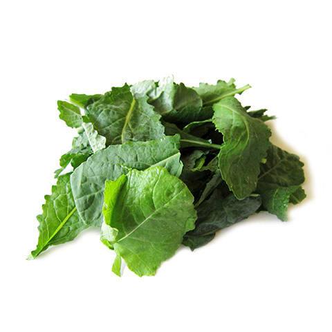 Organic Mongolian Baby Kale