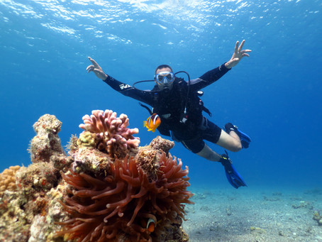 Right now we are working on Scuba Diving Packages