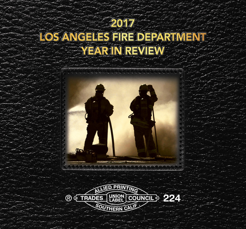 FD YEAR IN REVIEW BOOKS