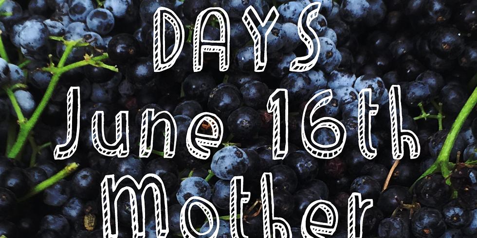 Elderberry Days 2018 June 16