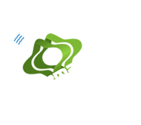 Vermana-BACK-logo-10-year-_edited.png