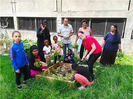 Reportage sur le jardin balbynien de Chemin Vert à Bobigny - Semeco/La Sauge