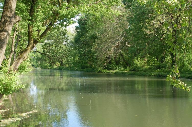 5.11.12-Canal.jpg
