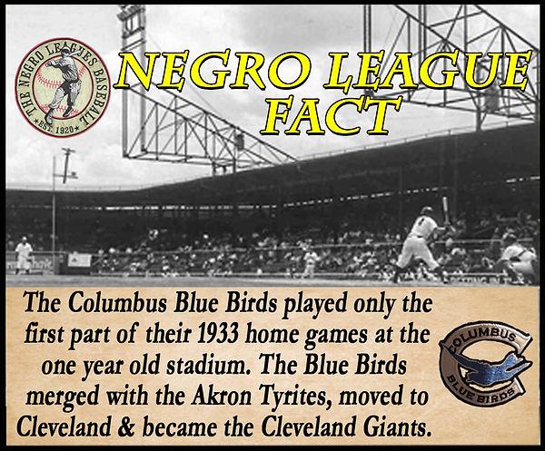 BB Negro League Fact Cooper 2020.jpg