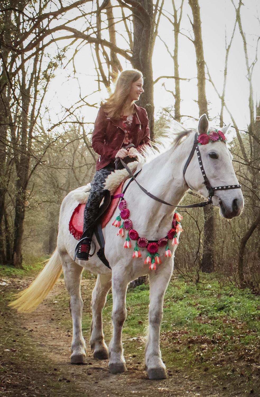 Альтечо, романтический ужин в лесу с прогулкой на лошадях 19