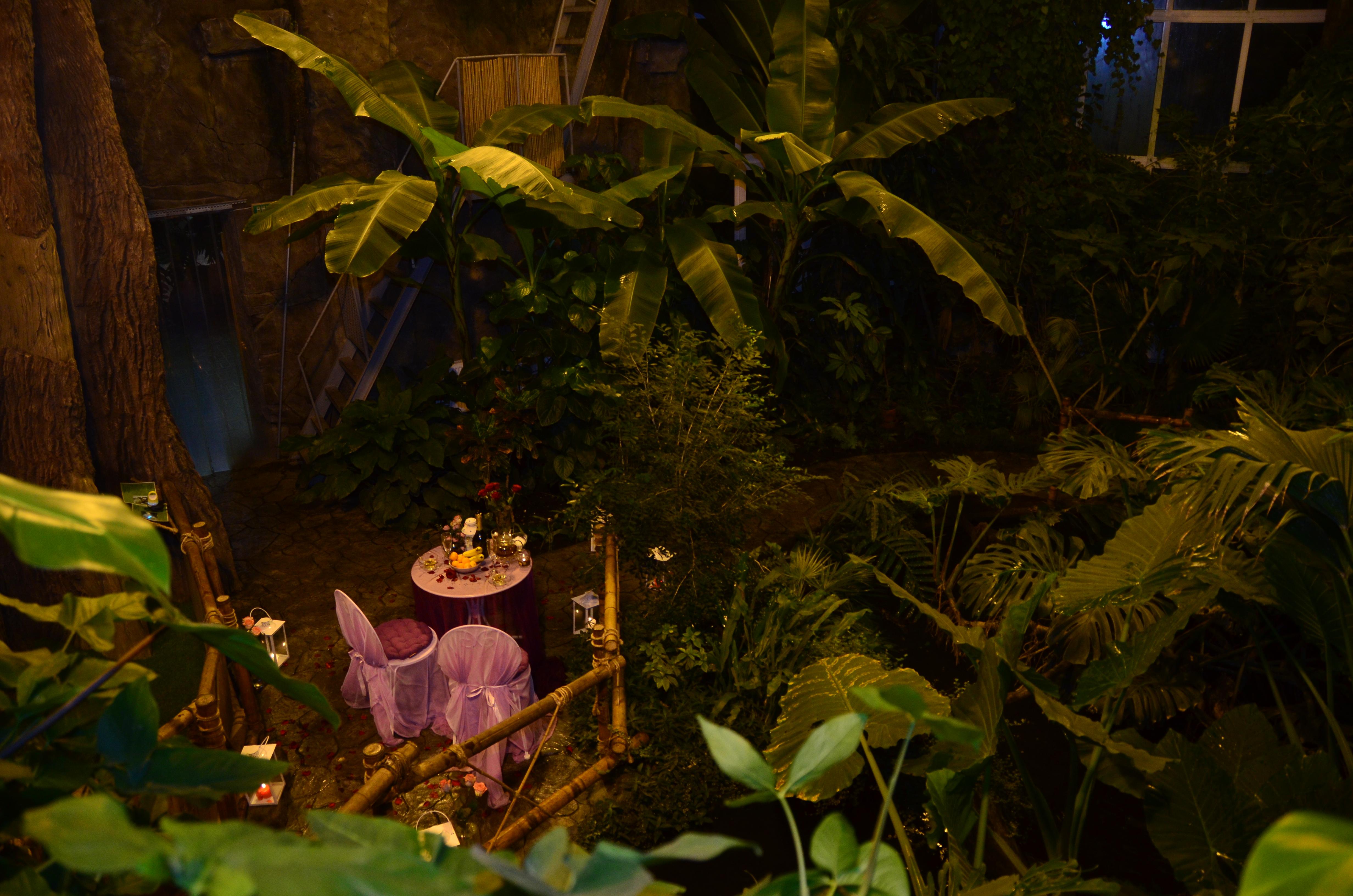 Свидание в тропиках у водопада, Киев, Альтечо (13)