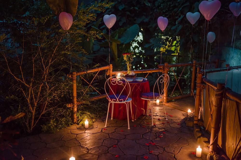 Свидание в Ботаническом саду от сервиса романтики Альтечо, Киев