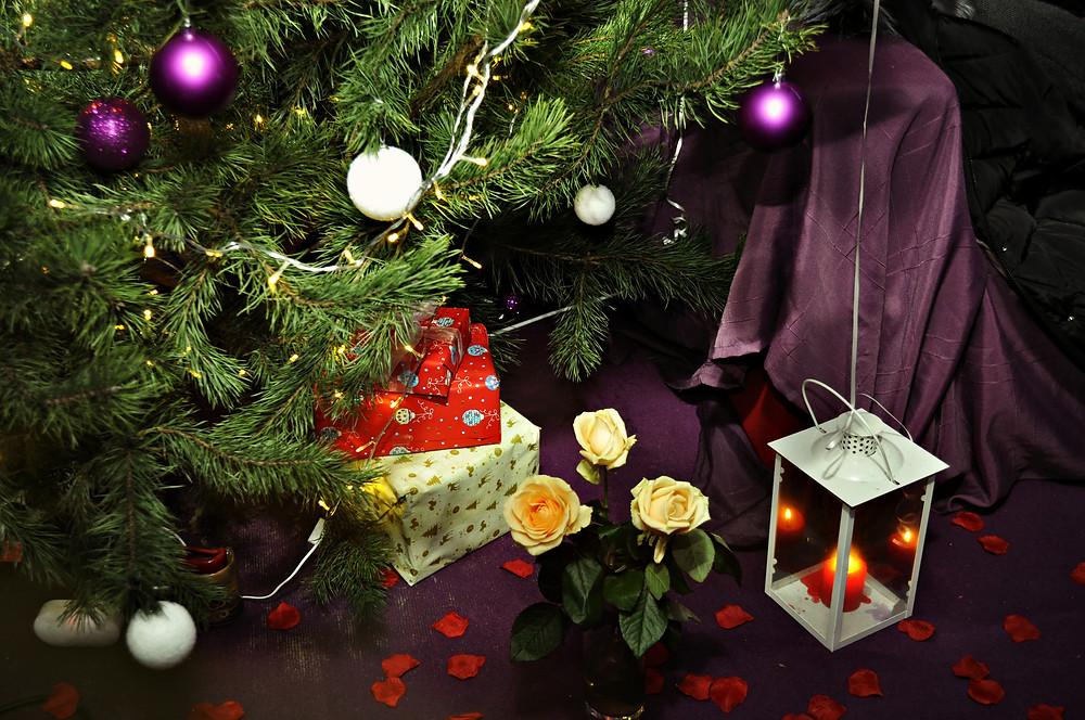 Романтический ужин на Новый год, Альтечо